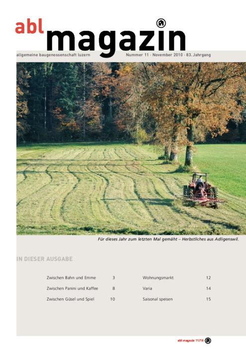 magazin November 2010