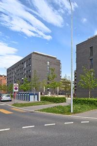 Bild Siedlung TribschenStadt