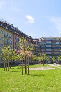 Bild Siedlung Himmelrich 2