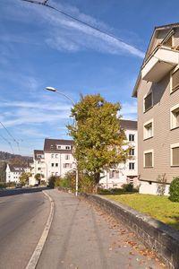 Bild Siedlung Breitenlachen 2